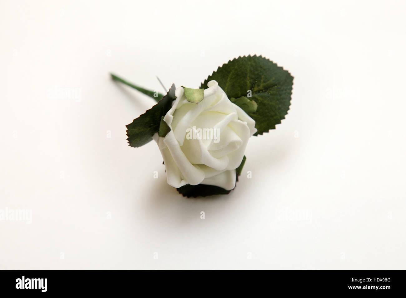 Una Rosa Blanca Atado Como Un Ojal Para Una Boda O Cualquier Otra