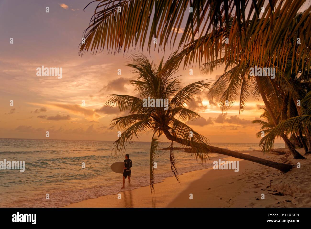 Surfer y el atardecer en la playa de Dover, St. Lawrence Gap, South Coast, Barbados, Caribe. Imagen De Stock