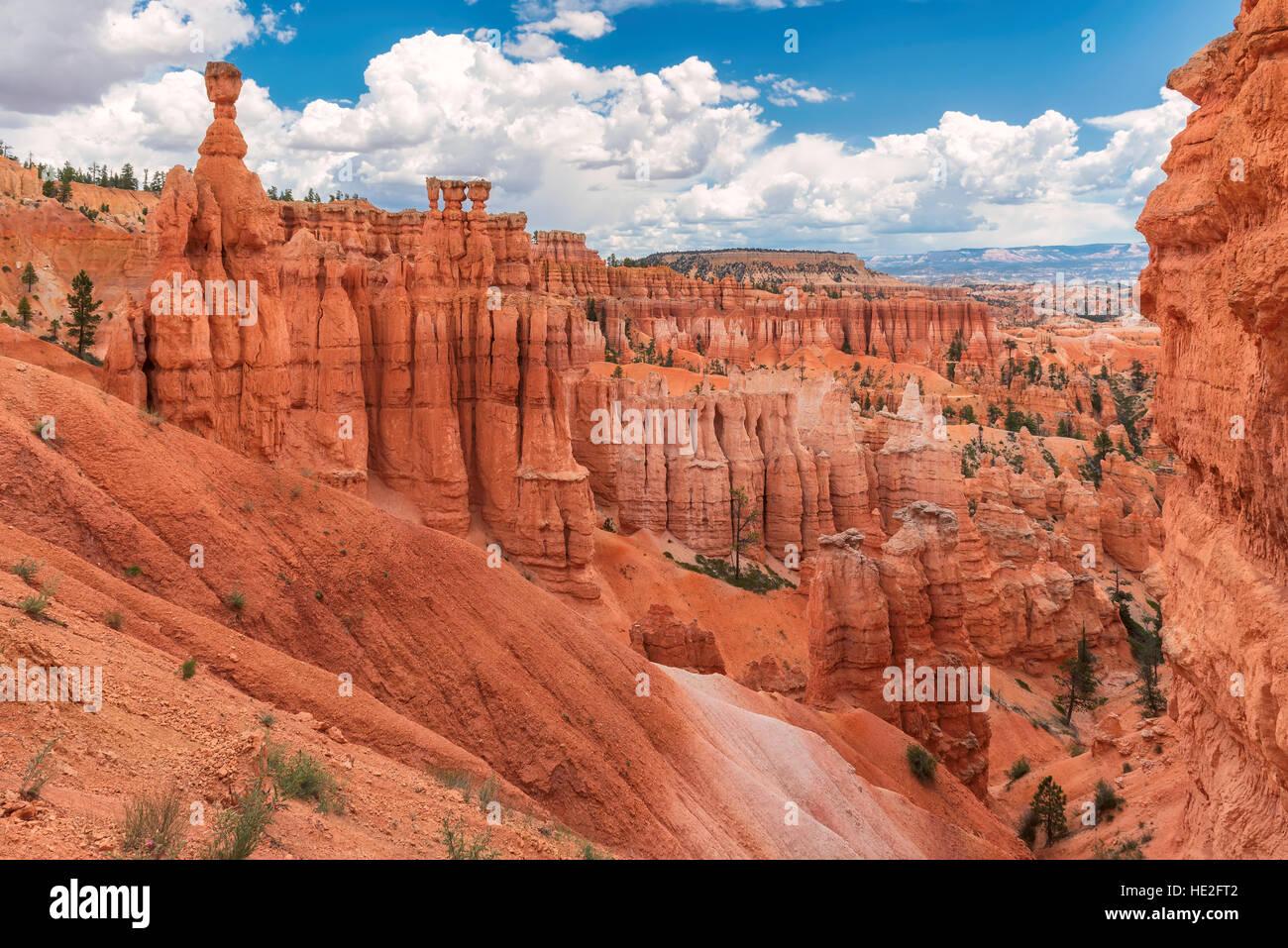 Bryce Canyon National Park en Utah Imagen De Stock