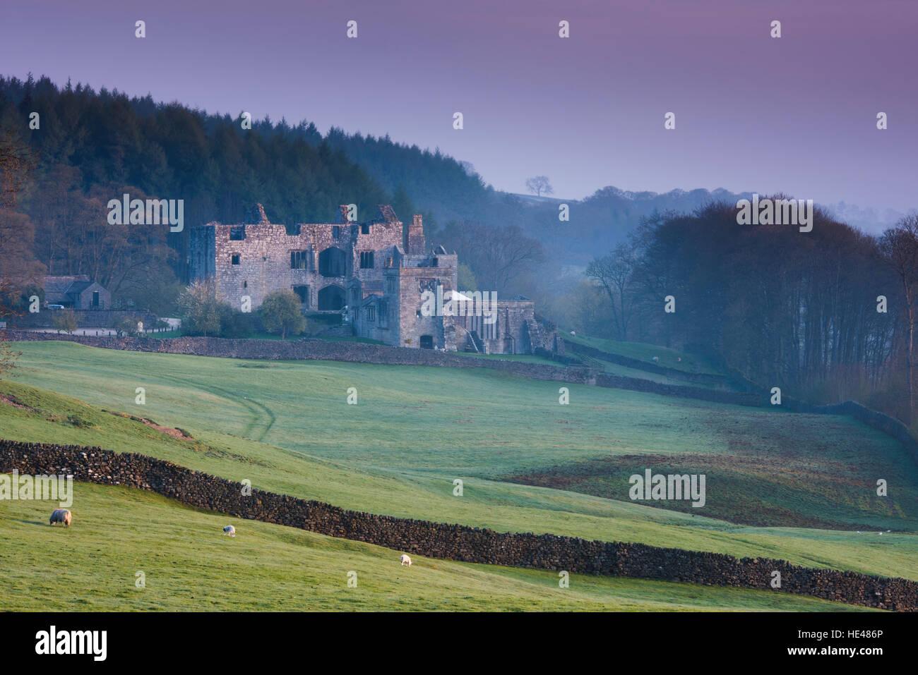 Rosa invierno amanecer cielo y hermosas ruinas históricas de la antigua torre Barden iluminada por el sol - pintoresco paisaje de Dales, Bolton Abbey Estate, Yorkshire, Inglaterra GB. Foto de stock