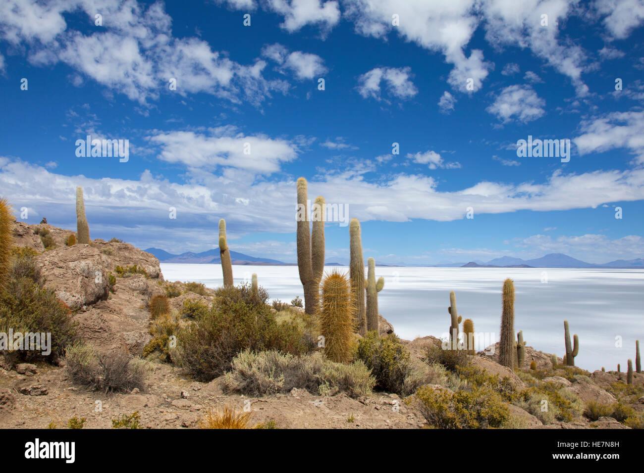 Ver en el Salar de Uyuni Desde la Isla Incahuasi Imagen De Stock