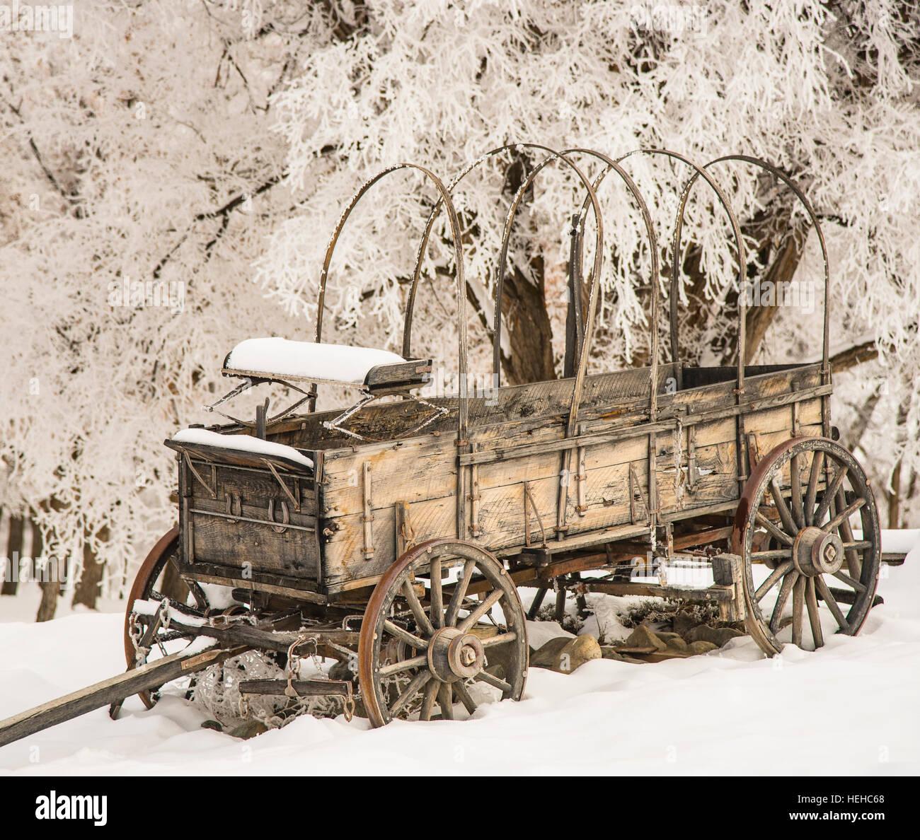 Despedida histórica Bend State Recreation sitio en invierno. Conestoga Wagon rodeado por árboles helada Imagen De Stock