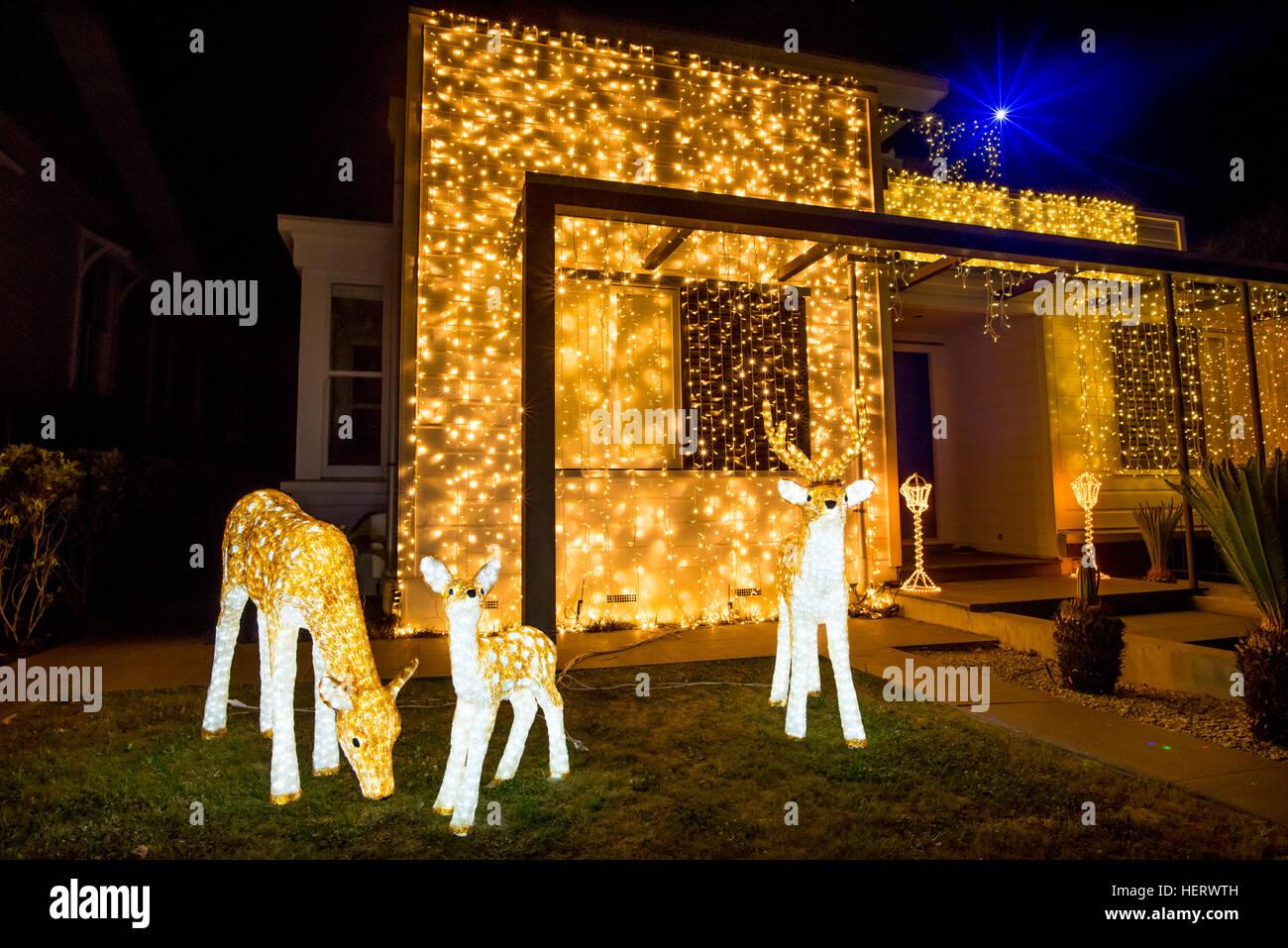 Hermosa Piscina Exterior De Las Luces De Navidad Cada Año