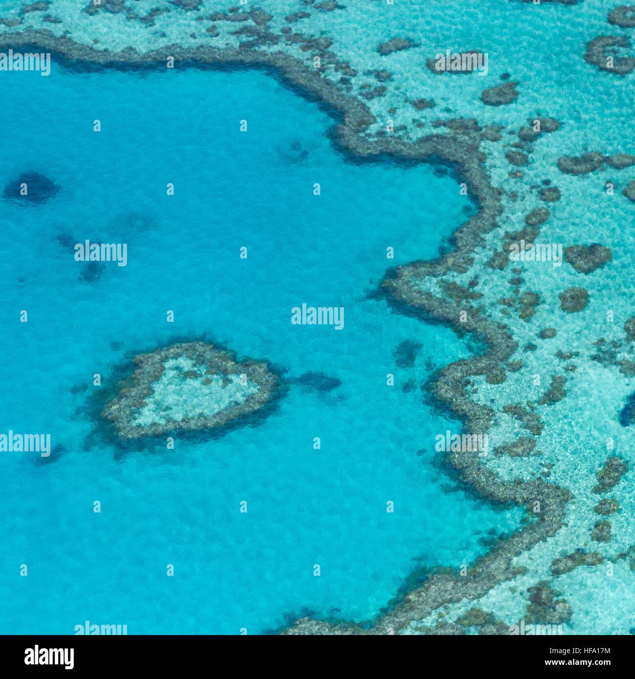 Desde arriba de la Gran Barrera de Coral, Queensland, Australia Foto de stock