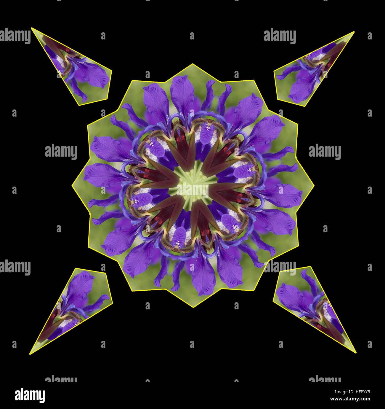Caleidoscopio hecho desde un pétalo púrpura Iris Foto de stock