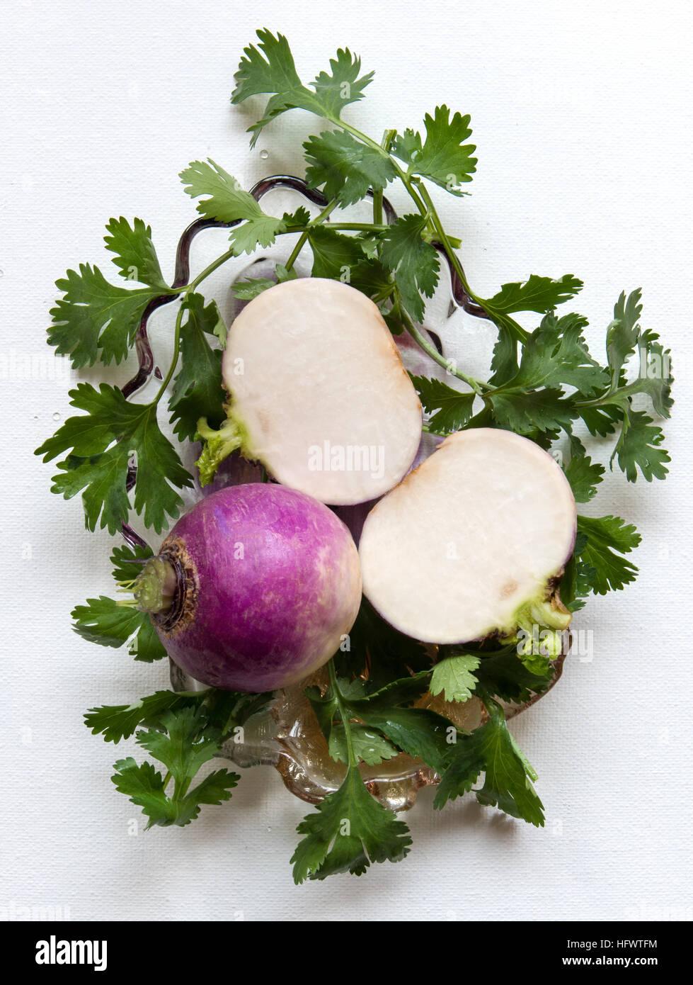 Nabos las verduras cortadas y entera vestida con hojas de cilantro, vista superior de fondo blanco. Imagen De Stock