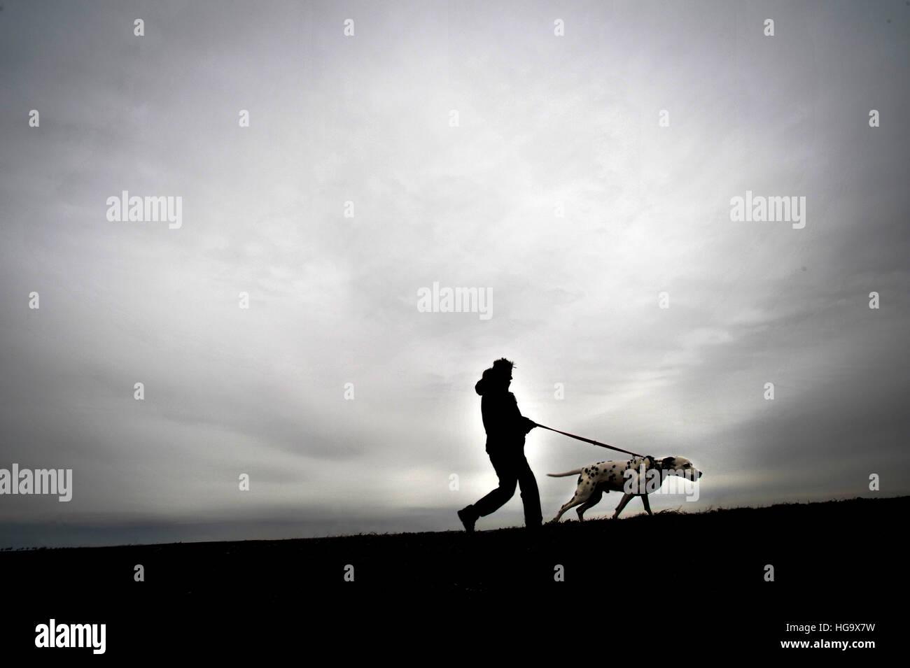 El hombre lleva a su perro a caminar. Foto de stock
