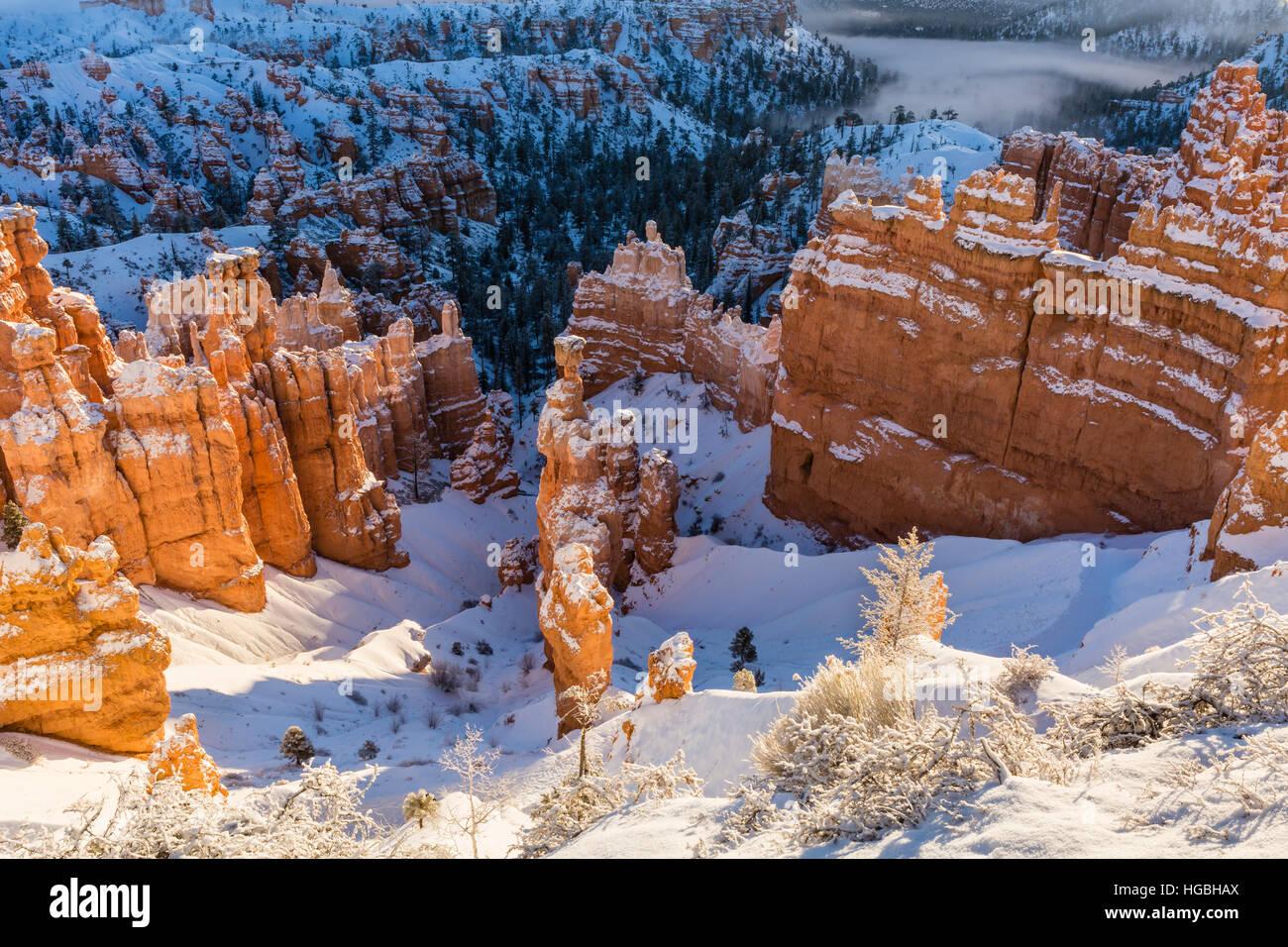 Sol de mañana sobre la nieve envuelto hoodoos cerca de Sunset Point en Bryce Canyon National Park, Utah Foto de stock