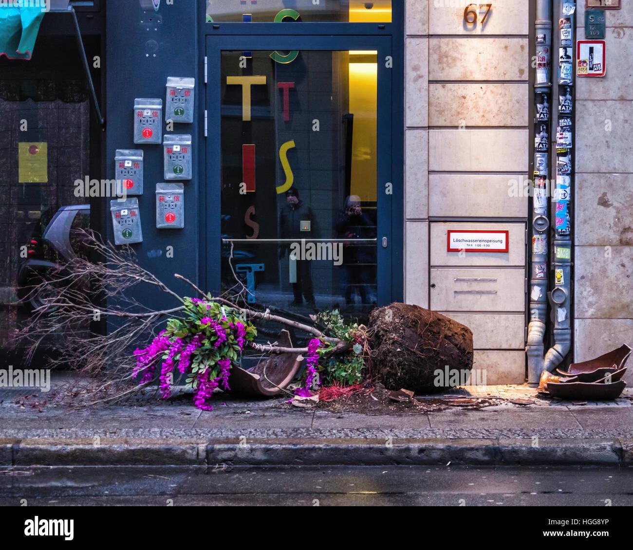 Berlín Mitte. El vandalismo. Destrozados, roto la maceta en el pavimento de las calles de la ciudad Foto de stock