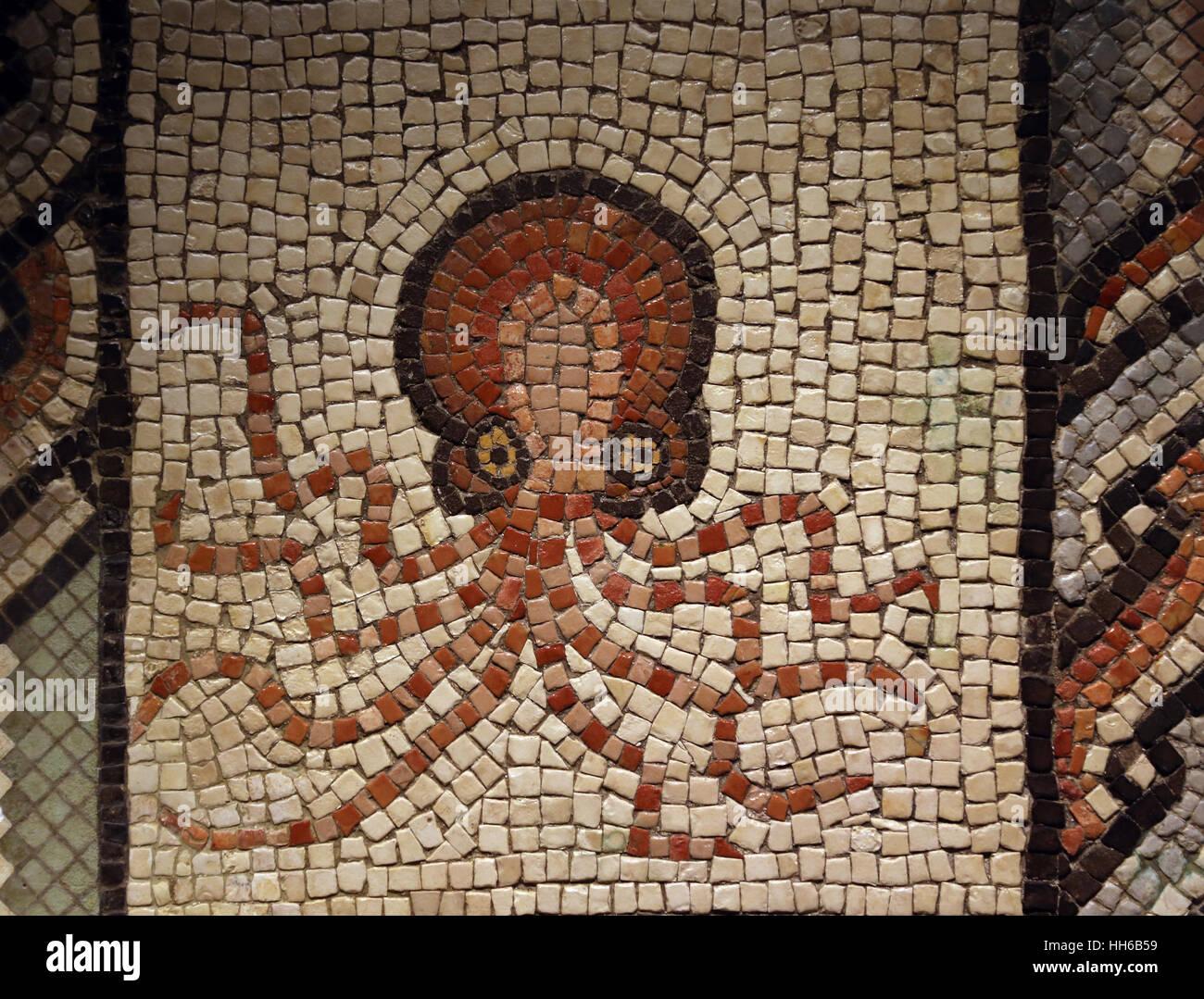 Mosaico con pulpo. La piedra caliza. 2ª-3ª siglo. Villaquejida, León. España. Museo Arqueológico Nacional de Madrid. Foto de stock