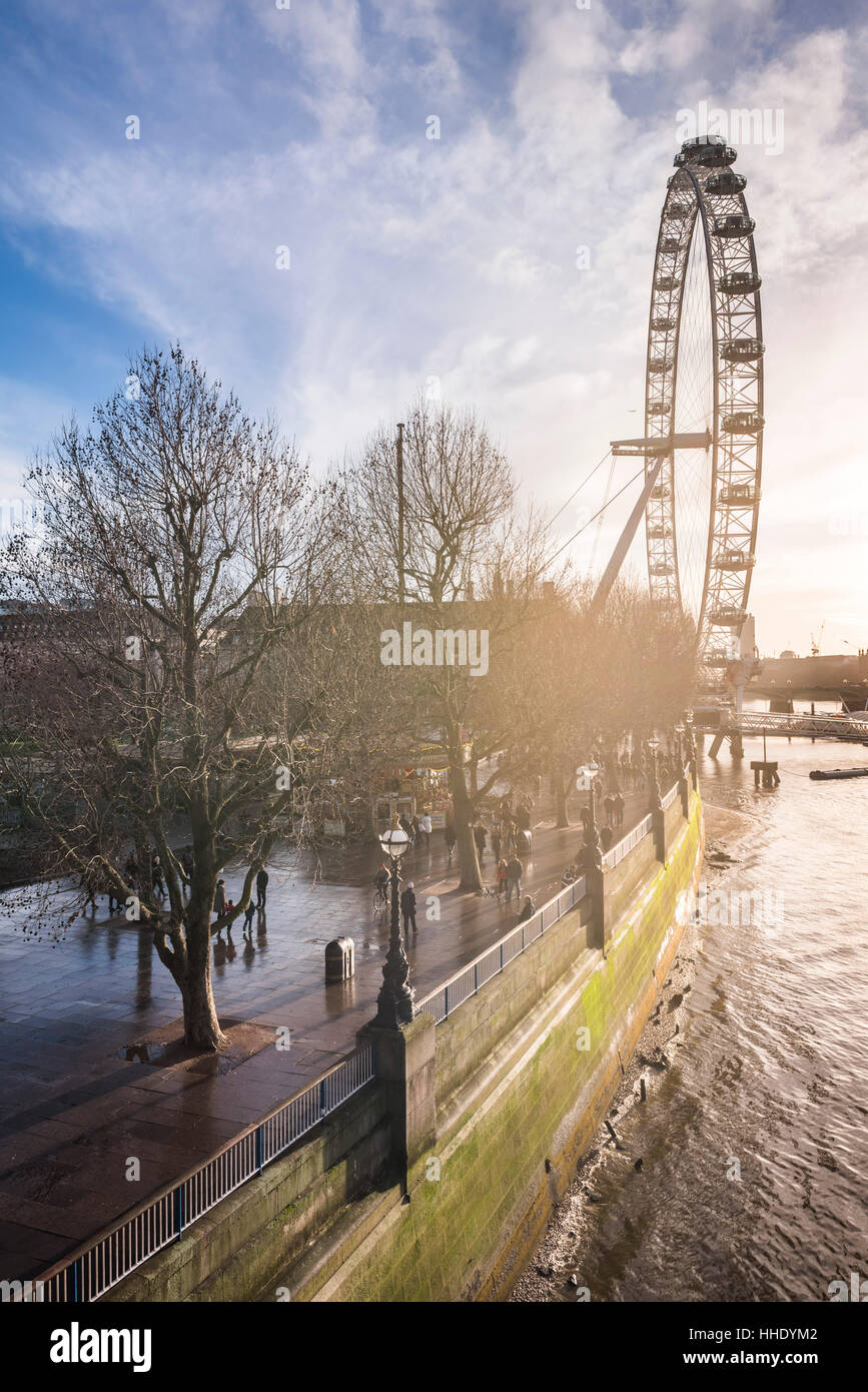 London Eye (Rueda del Milenio) al atardecer, distrito londinense de Lambeth, UK Imagen De Stock