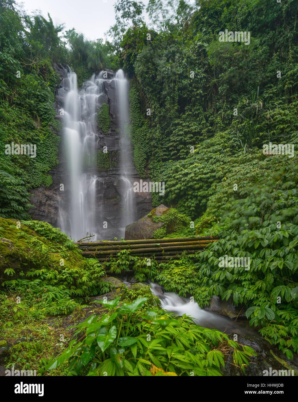 Munduk cascada en la selva, Munduk, Bali, Indonesia Imagen De Stock