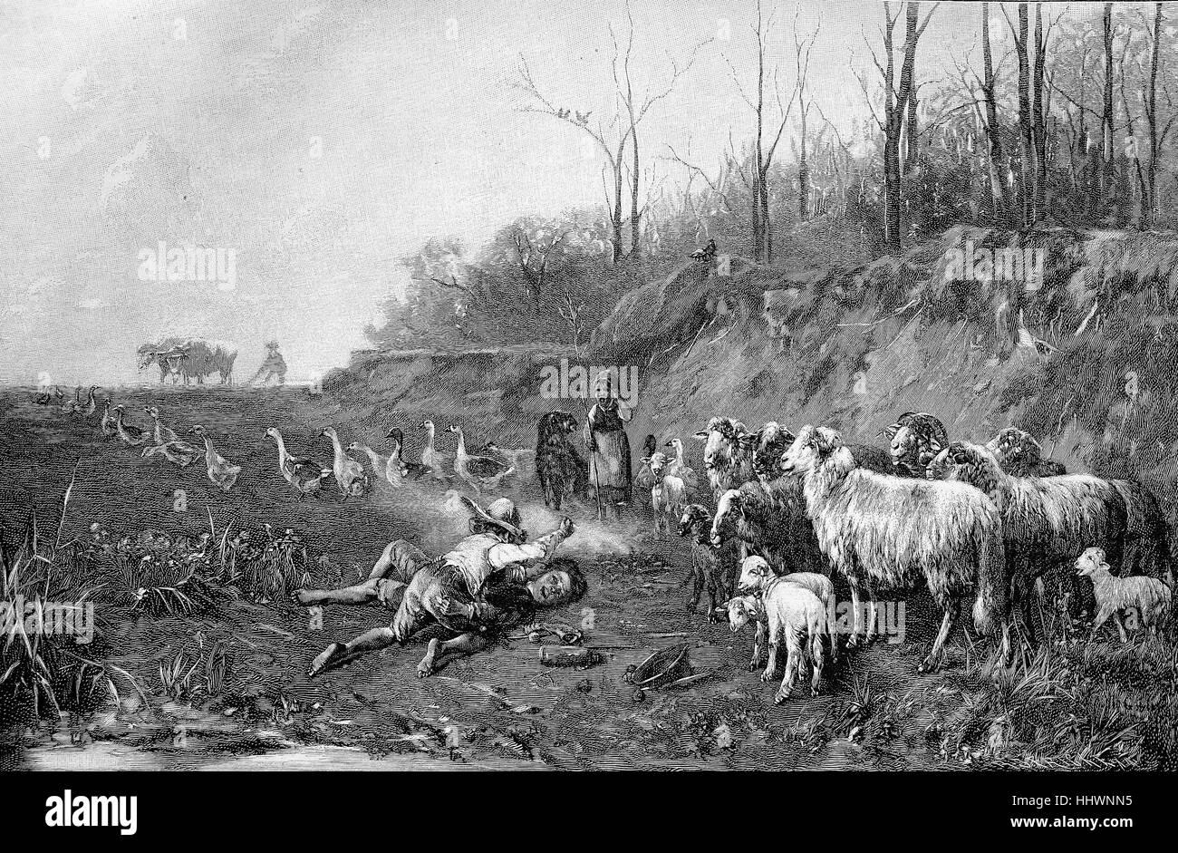 Los espectadores involuntarios, dos chicos están golpeando el uno al otro, una niña, ovejas y ocas está viendo, Foto de stock
