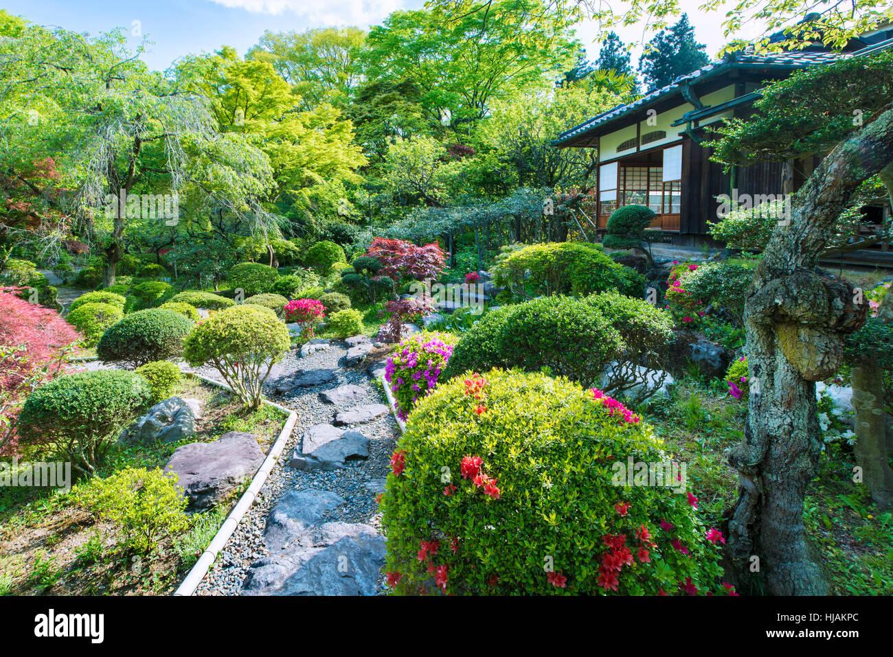 Un jardín de té japonés tradicional y de la casa, chashitsu, cerca de Tokio, en Japón Imagen De Stock
