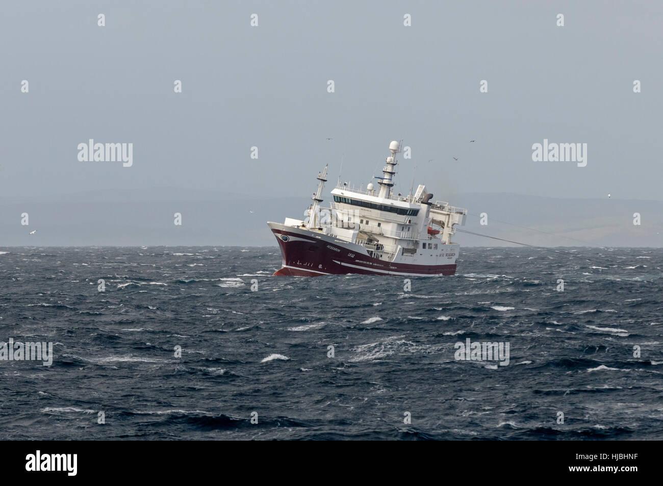 """Arrastreros pelágicos """"Investigación"""" la pesca de la caballa en la costa de las Islas Shetland. De octubre de 2011. Foto de stock"""
