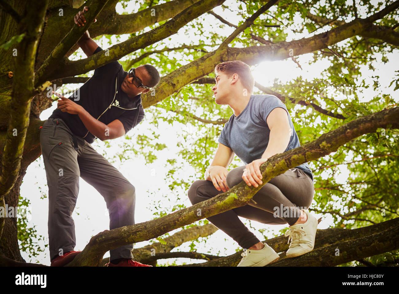 Hombre con entrenador personal indicándole cómo subir árbol en park Imagen De Stock