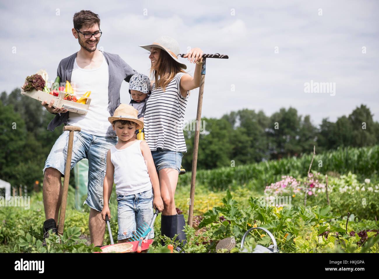 Familia cosechando vegetales en el jardín comunitario, Baviera, Alemania Foto de stock