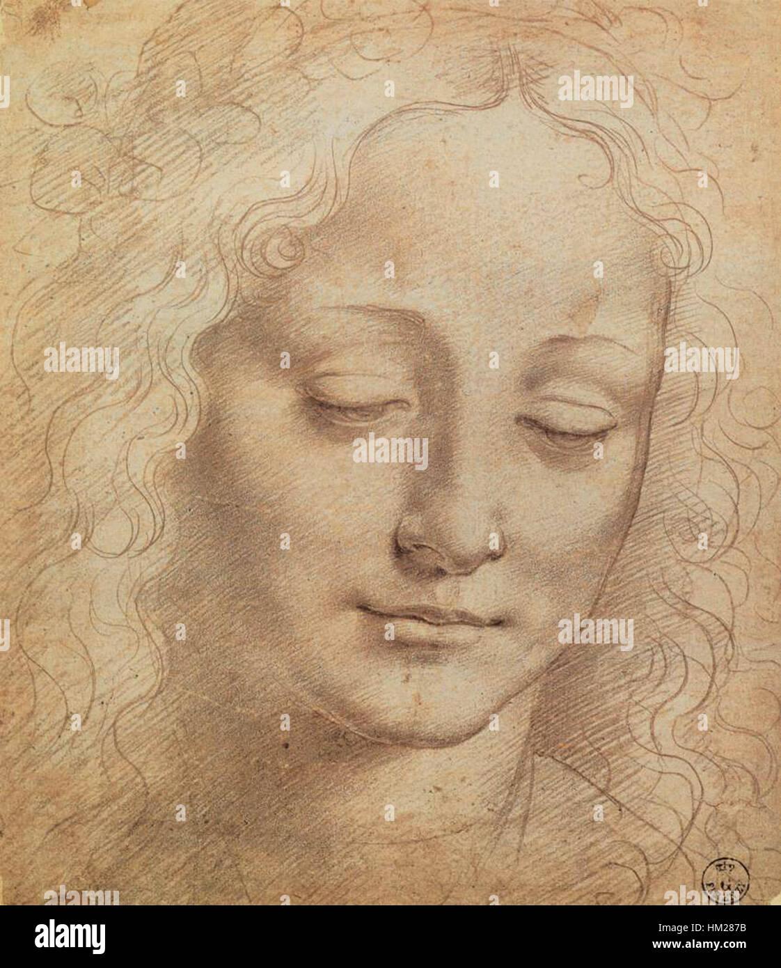 Leonardo da Vinci, cabeza femenina Foto & Imagen De Stock: 132816079 ...