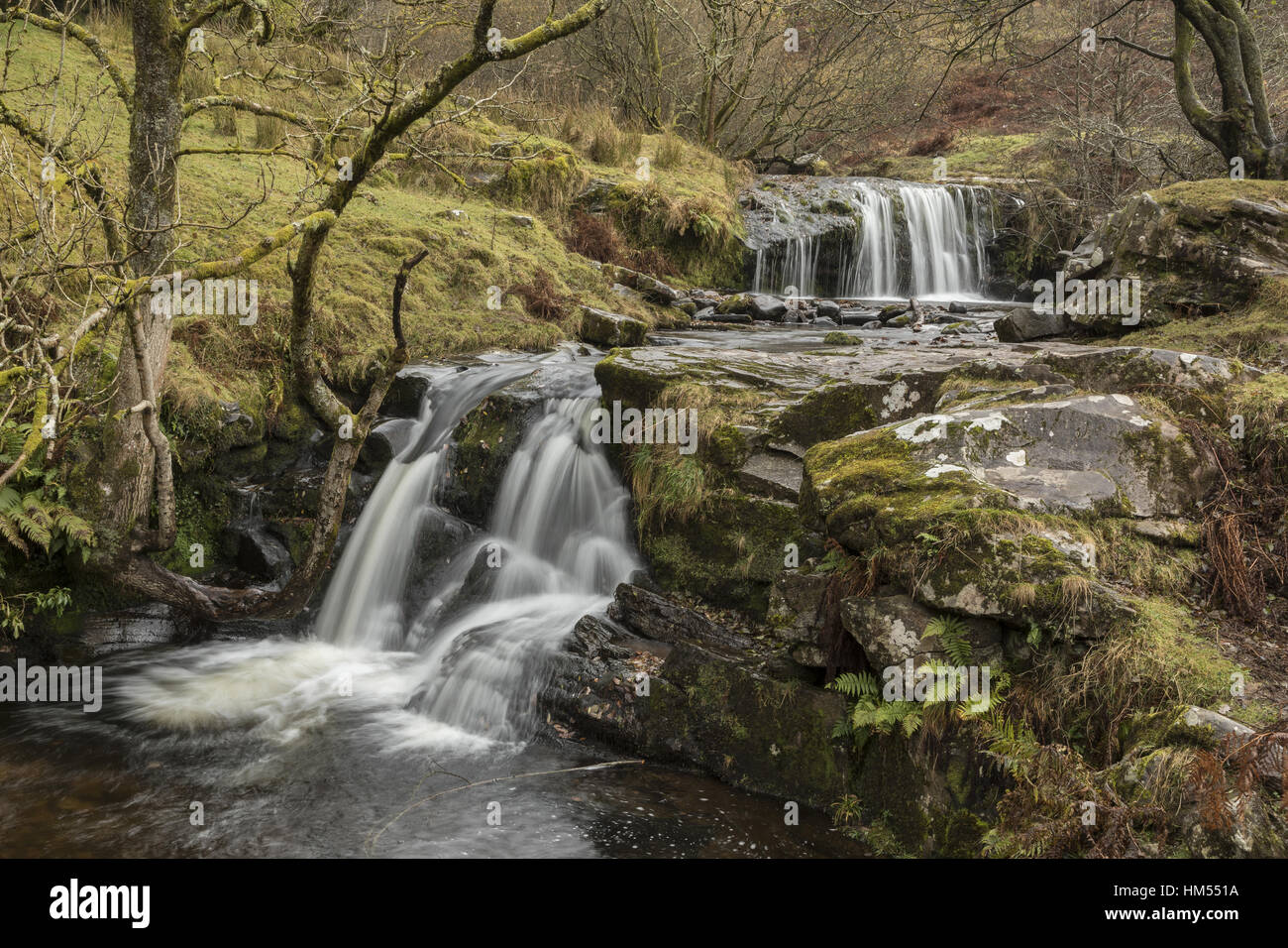 Uno de los Blaen y Glyn Cascadas, sobre el río Caerfanell, (afluente del Usk), Brecon Beacons. Foto de stock