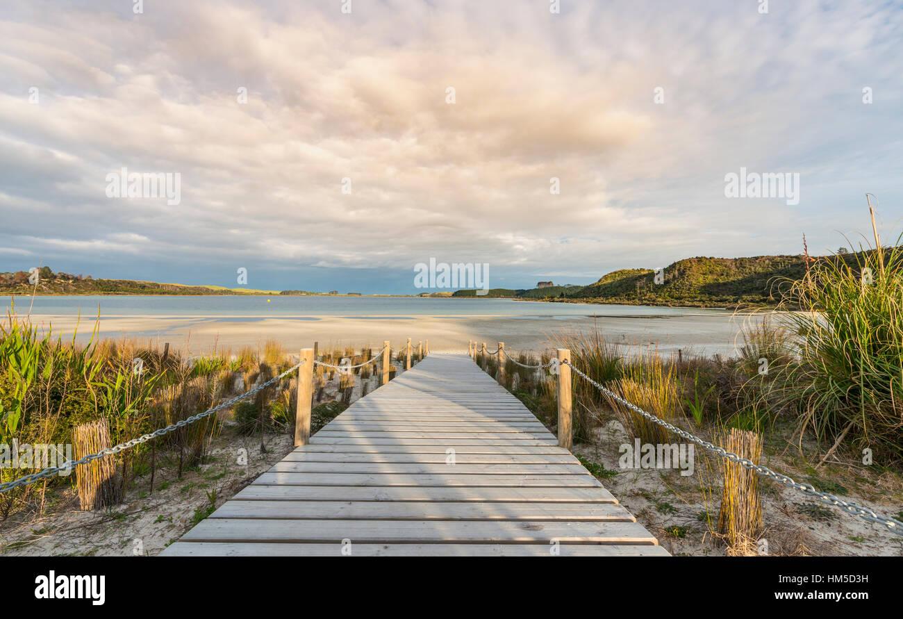 Paseo a la playa, lago Taharoa, Northland, Isla del Norte, Nueva Zelanda Imagen De Stock