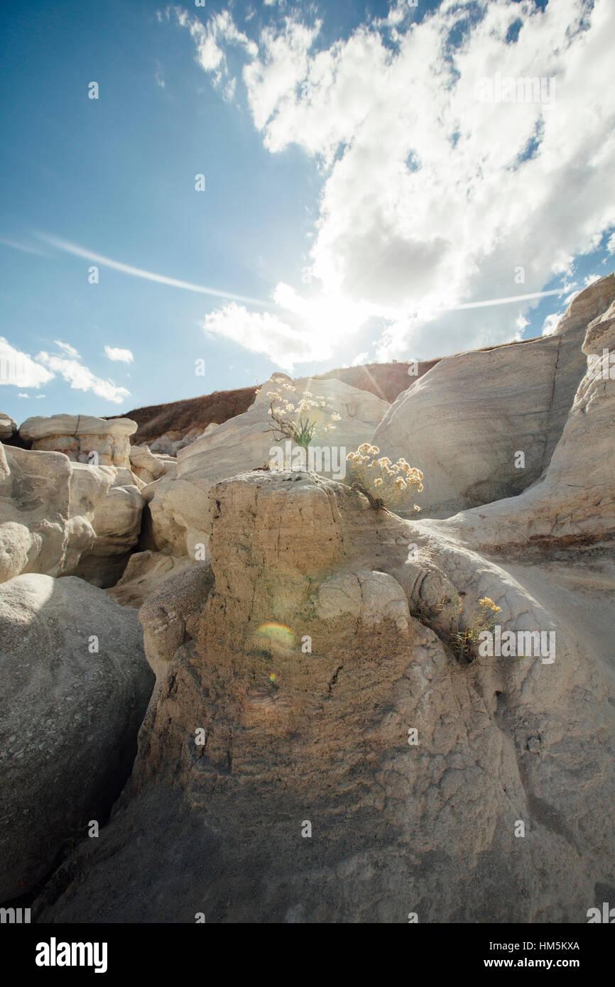La luz del sol cayendo sobre formación de roca en minas de pintura Parque Interpretativo Imagen De Stock
