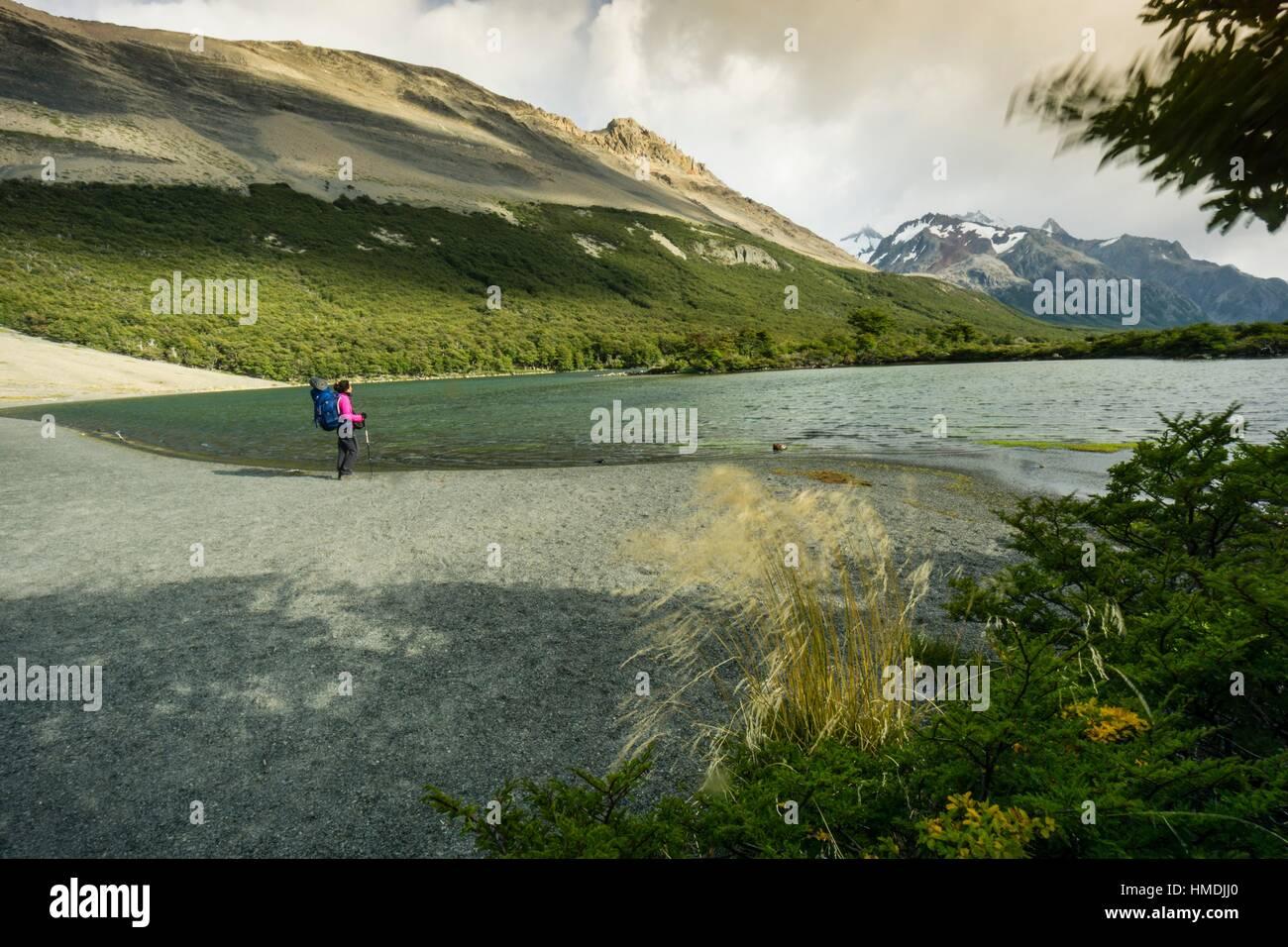 Senda de las lagunas Madre e hija, el parque nacional Los Glaciares, Republica Argentina, Patagonia, cono sur, América Imagen De Stock