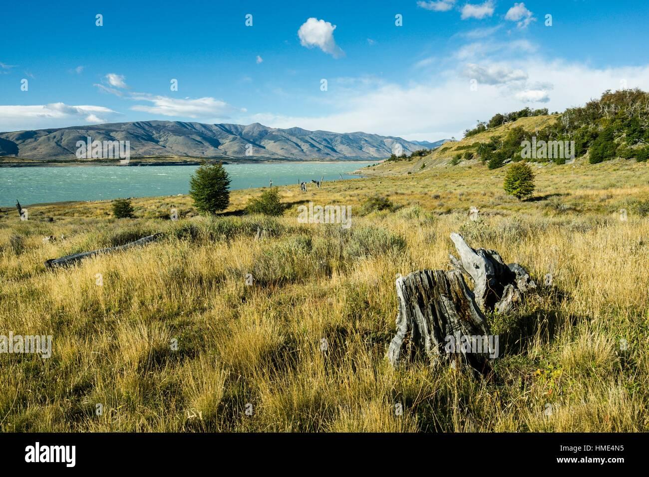 Parque Nacional Los Glaciares, departamento Lago Argentino, provincia de santa cruz, Republica Argentina, Patagonia, Imagen De Stock
