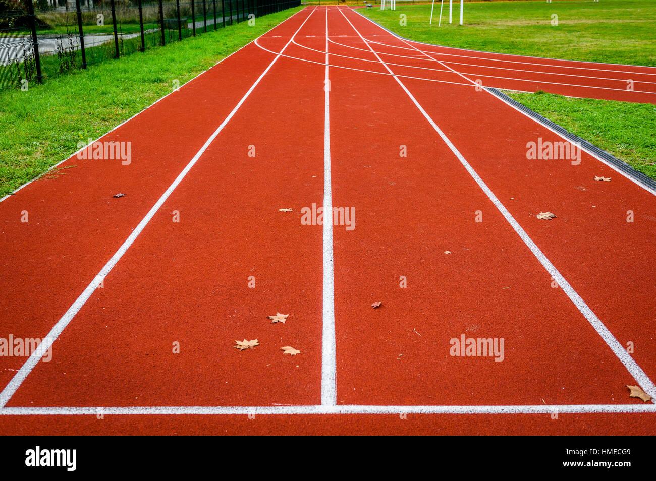 Hojas de arce en la pista de atletismo en el estadio de atletismo. Ejecutar una nueva pista o instalación deportiva Imagen De Stock