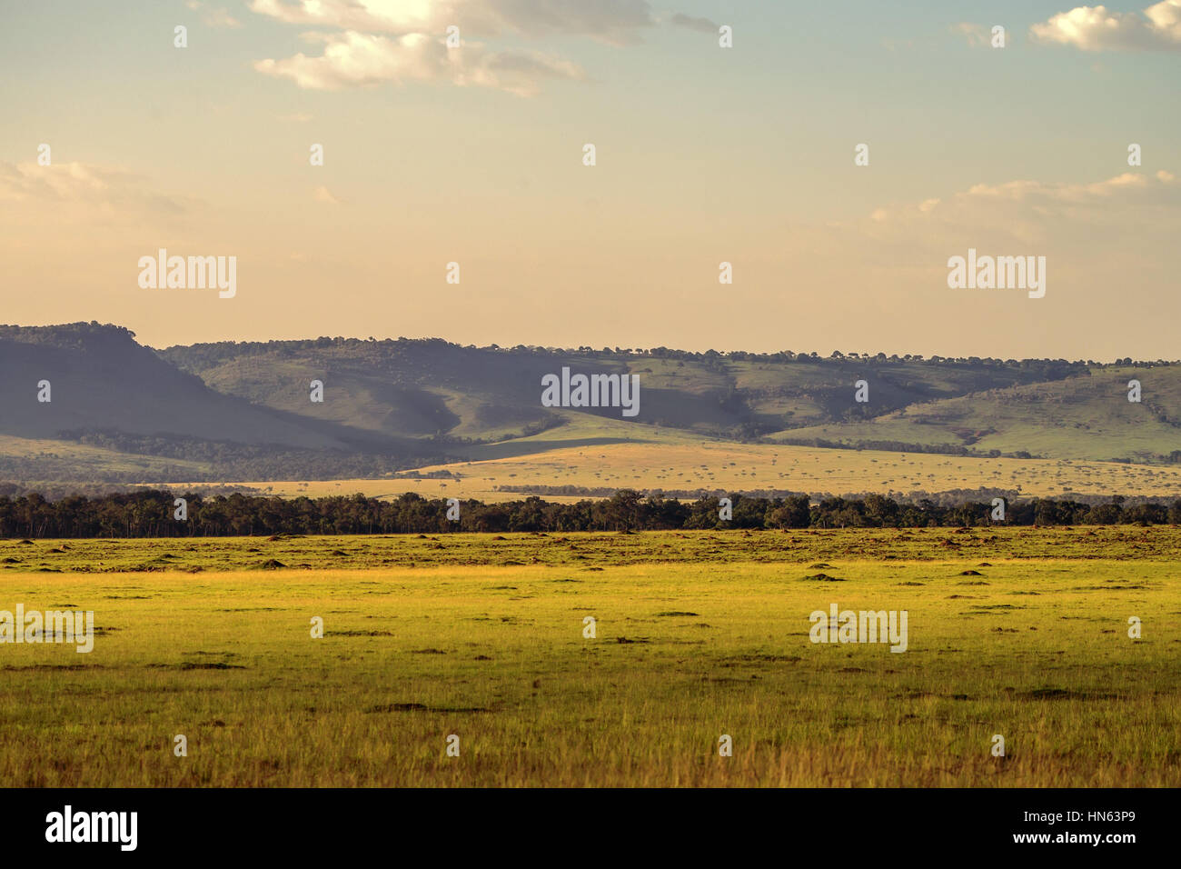 Pintoresco paisaje de sabana africana Maasai Mara, Kenia Imagen De Stock