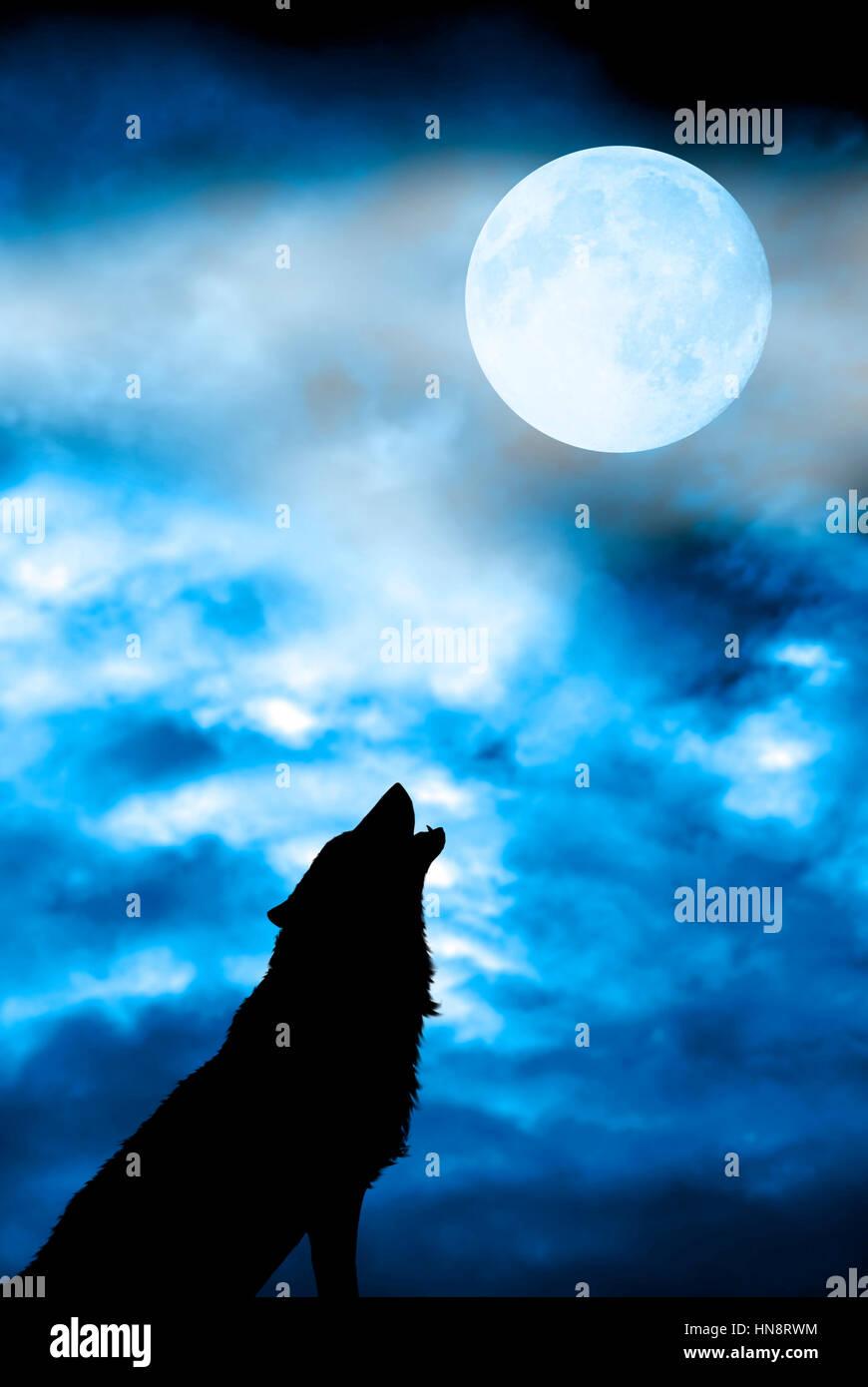 En Silueta Lobo Aullando A La Luna Llena Foto Imagen De Stock