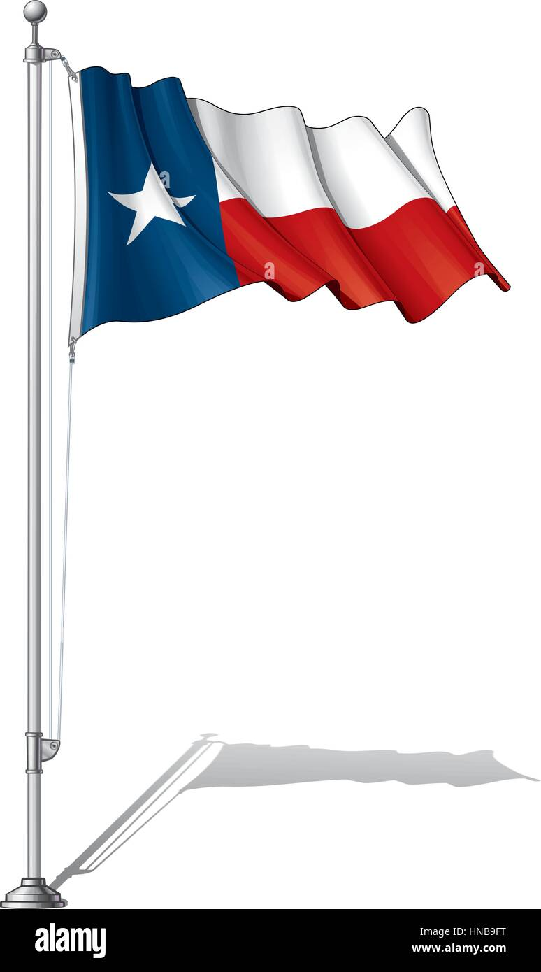 Ilustración Vectorial De Agitar La Bandera De Texas Fijar En
