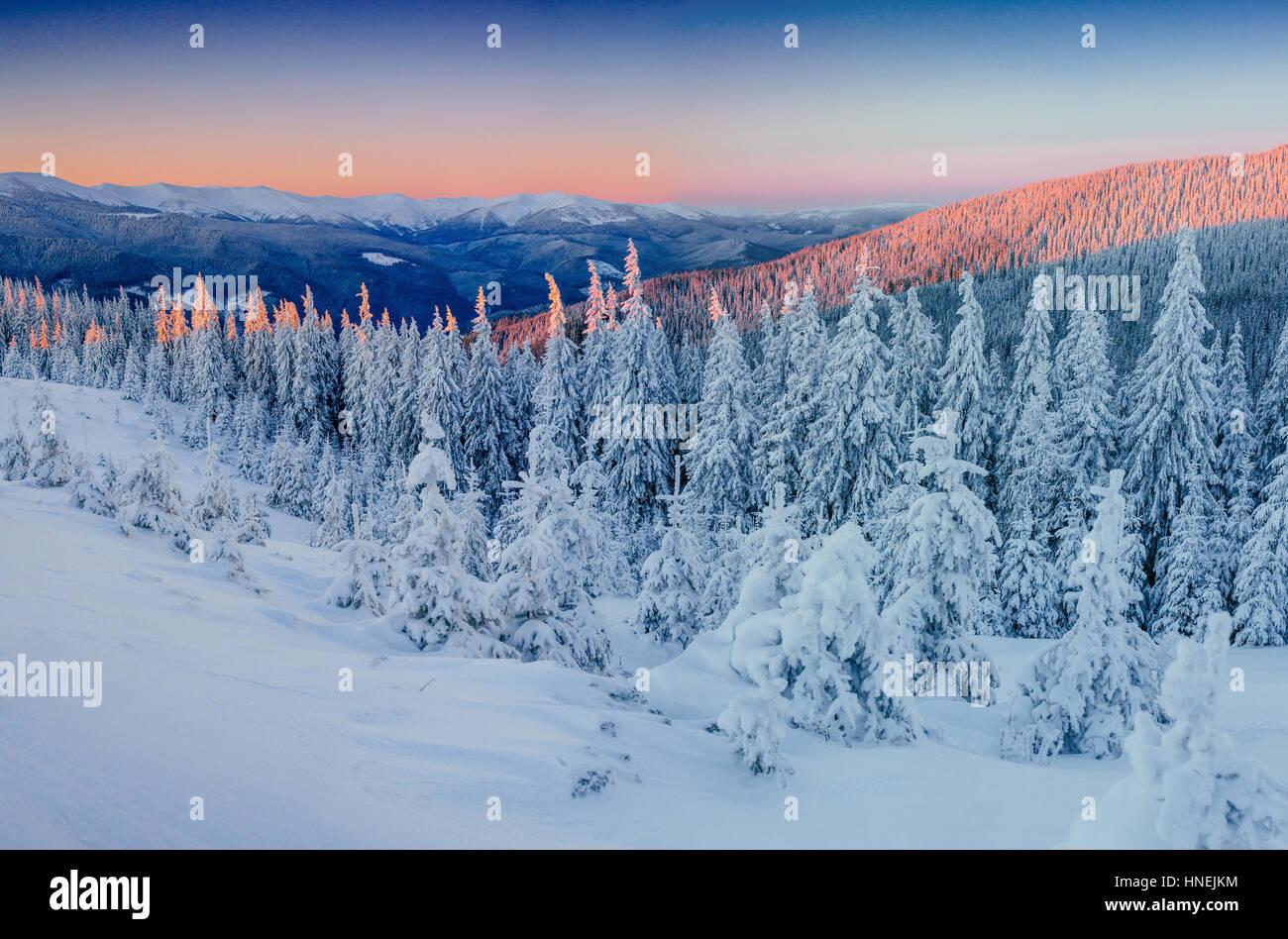 Fantástico paisaje de invierno en las montañas. En un atardecer mágico Imagen De Stock