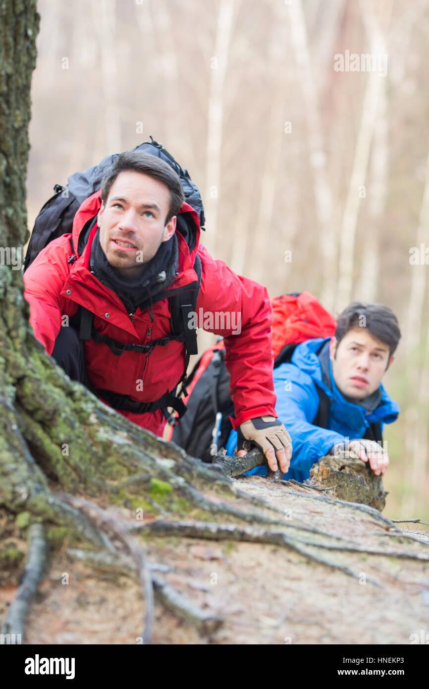Caminatas en el bosque de excursionistas macho Foto de stock