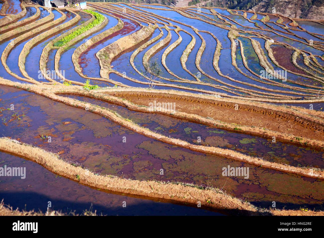 Panzhihua Panzhihua China El 11 De Febrero 2017