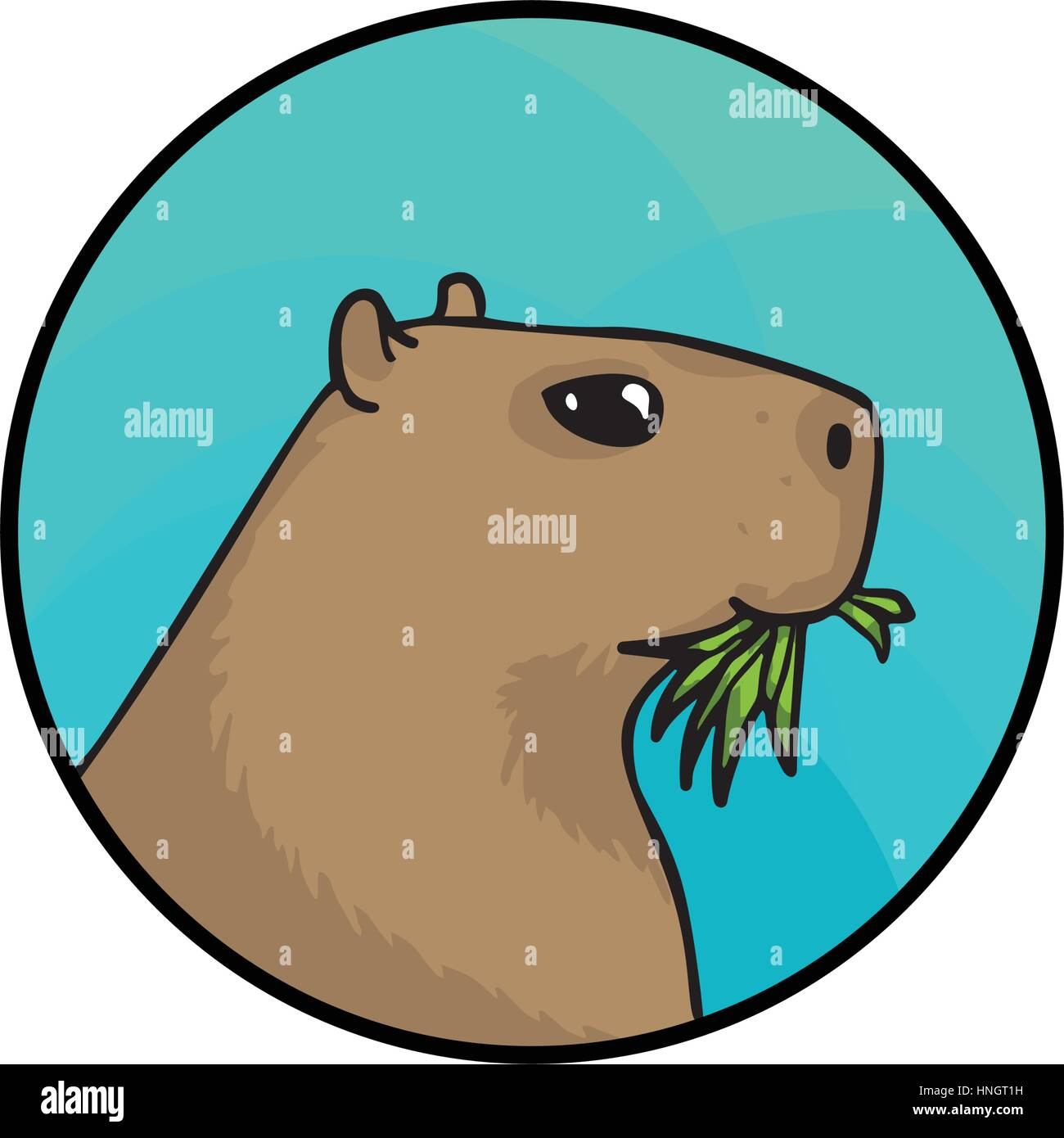 Illustration Capybara Imágenes De Stock & Illustration Capybara ...