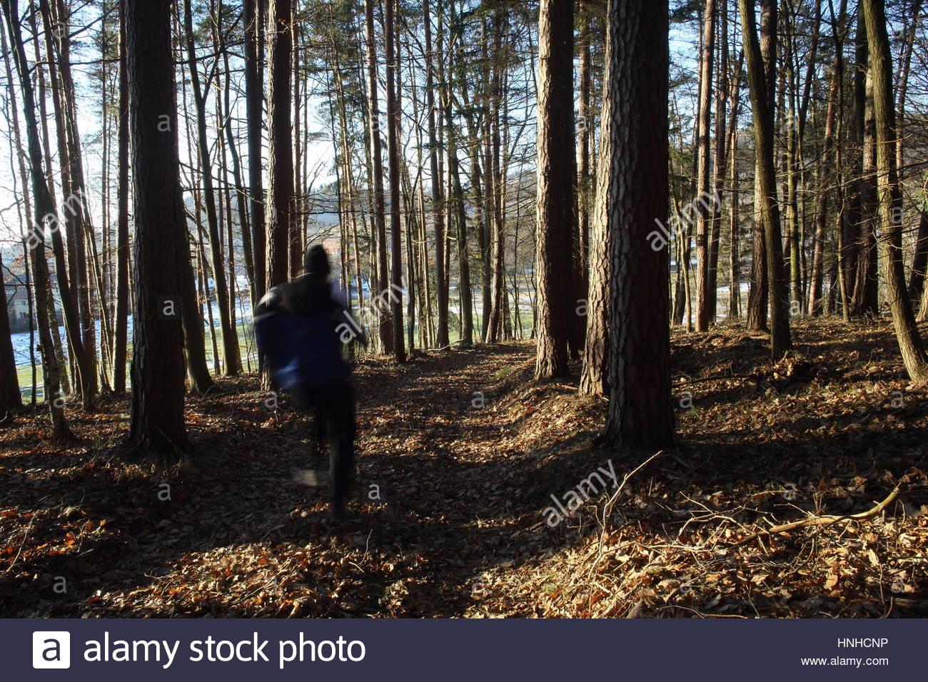 Un corredor corriendo a través del bosque en un bosque en Alemania Imagen De Stock