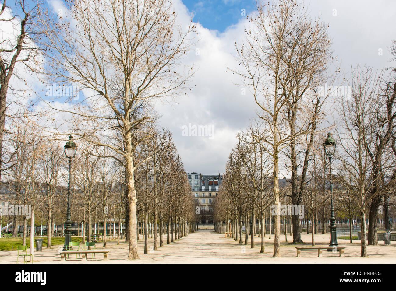 Jardin des Tuilleries, París, Francia, Europa Foto de stock