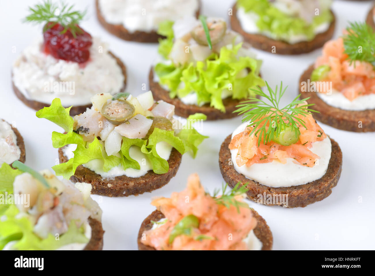 Sabrosos pescados canapés con salmón ahumado tartar en rábano picante, mousse de trucha y arenque con arándanos ensalada de Pumpernickel Bread Foto de stock