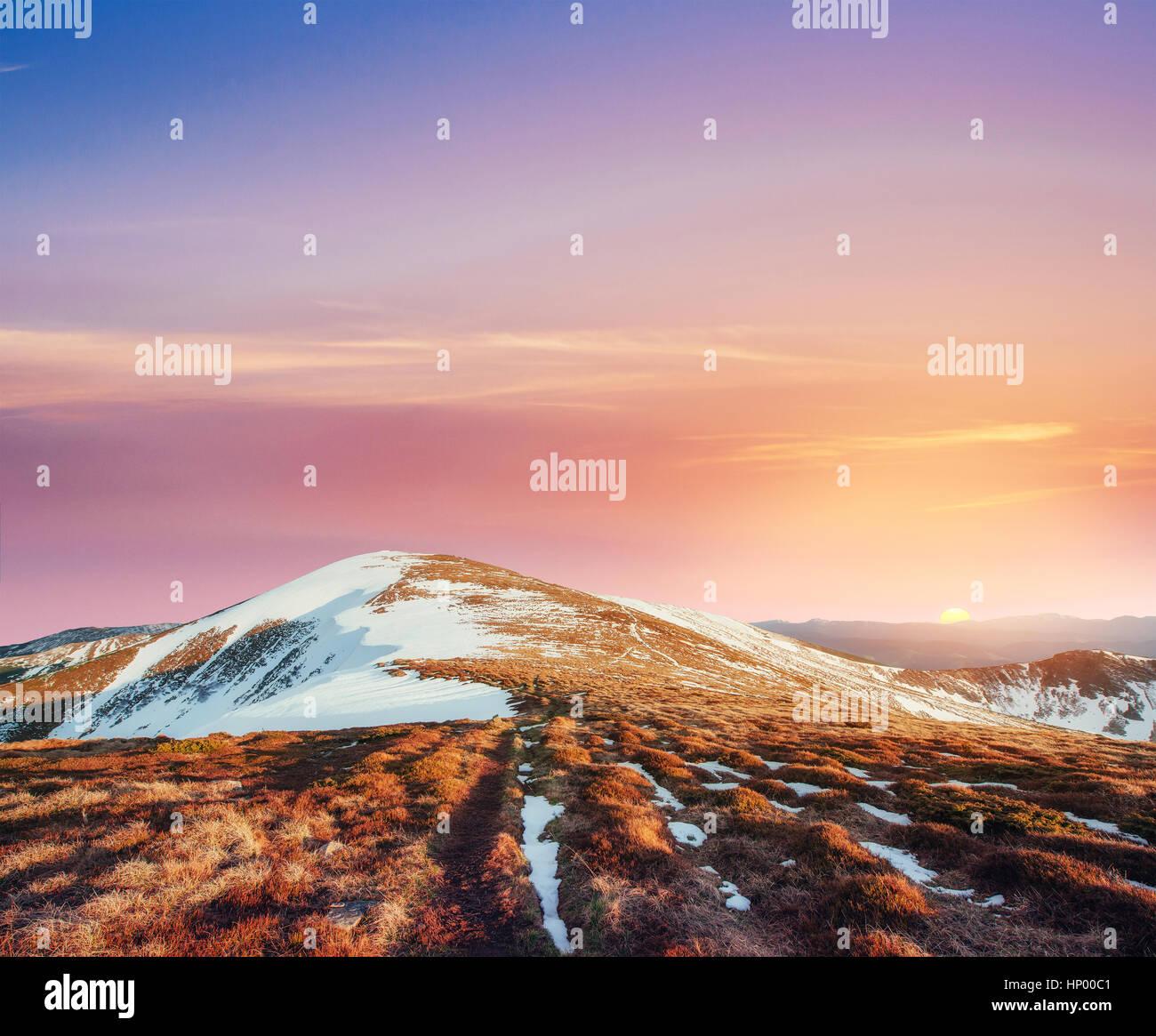 Invierno mágico árbol cubierto de nieve. Puesta de sol en los Cárpatos. Ukr Imagen De Stock
