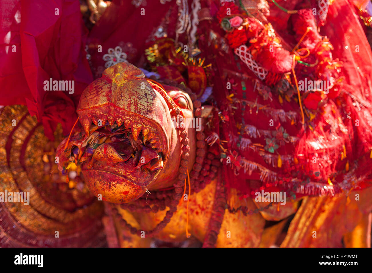Boca de Tigre o león, la estatua de la diosa pathivara, pathivara devi temple, Nepal Imagen De Stock