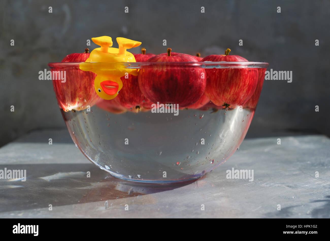Ducking para las manzanas. Pato de plástico amarillo disfrutando de un buen zambullirse en un tazón de Imagen De Stock