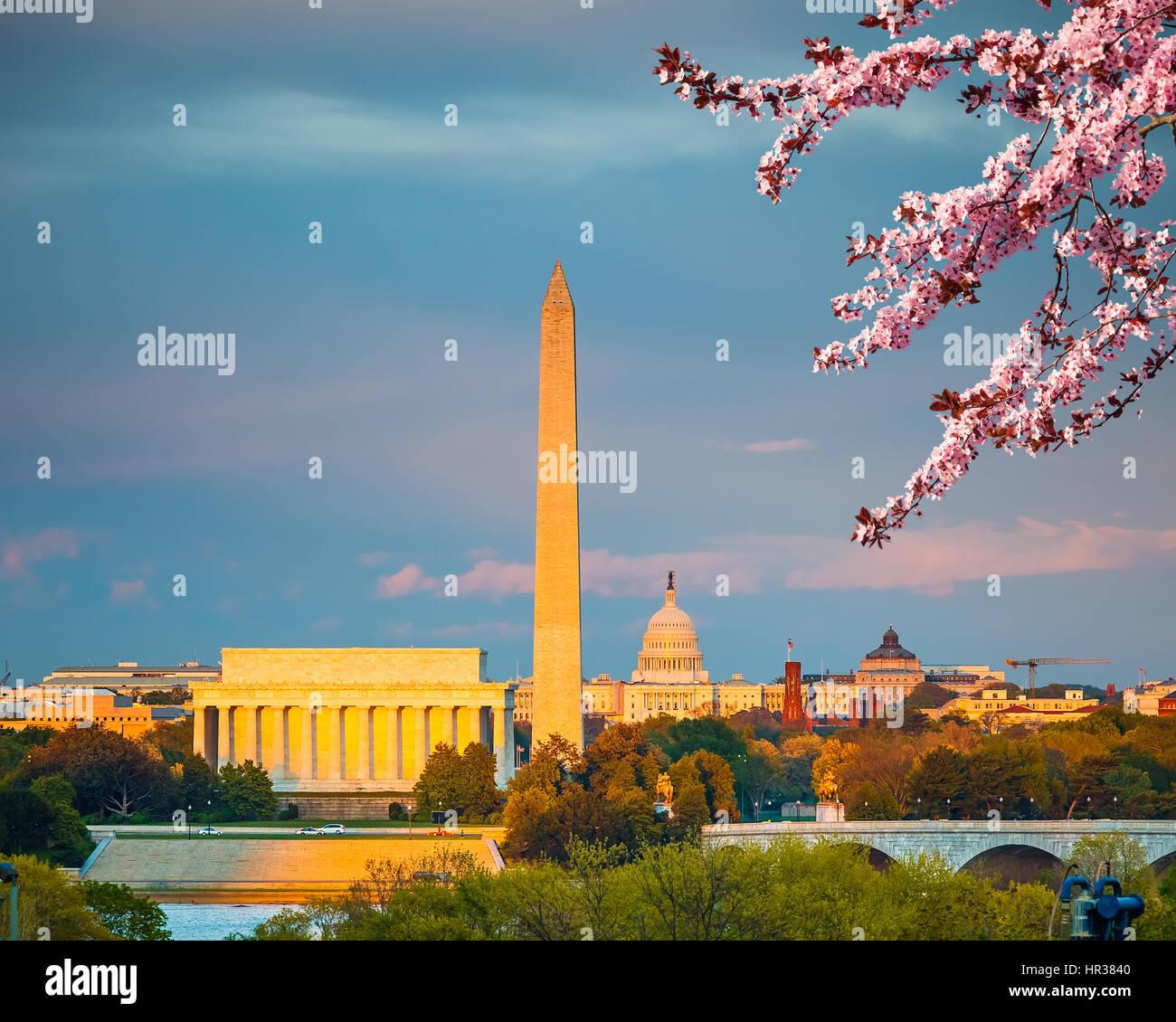 Los cerezos en flor en Washington D.C. Imagen De Stock