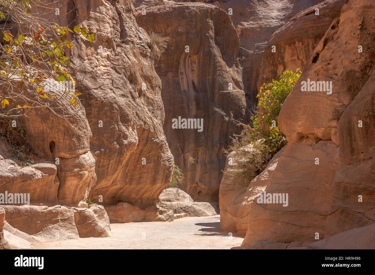 Paso Siq en Petra, Jordania Imagen De Stock