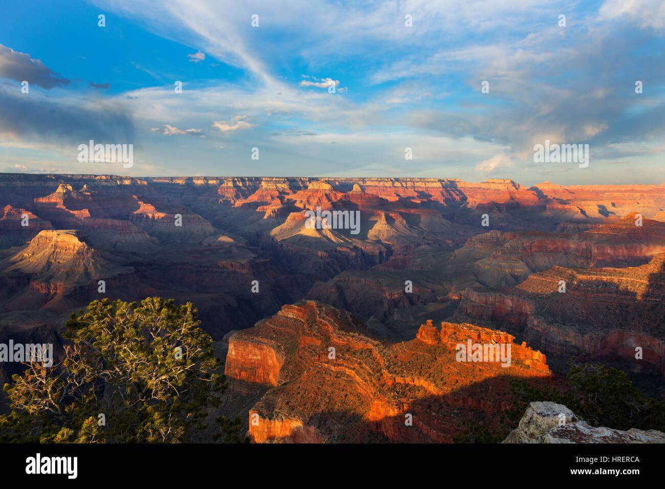 Punto de Powell, el Parque Nacional del Gran Cañón, Arizona Imagen De Stock