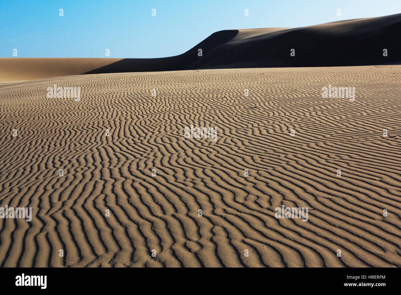 Reserva Natural Oceano Dunes, California Imagen De Stock