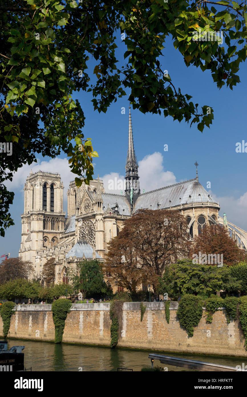 La catedral de Notre Dame, Ile de ciudades, París, Francia Imagen De Stock