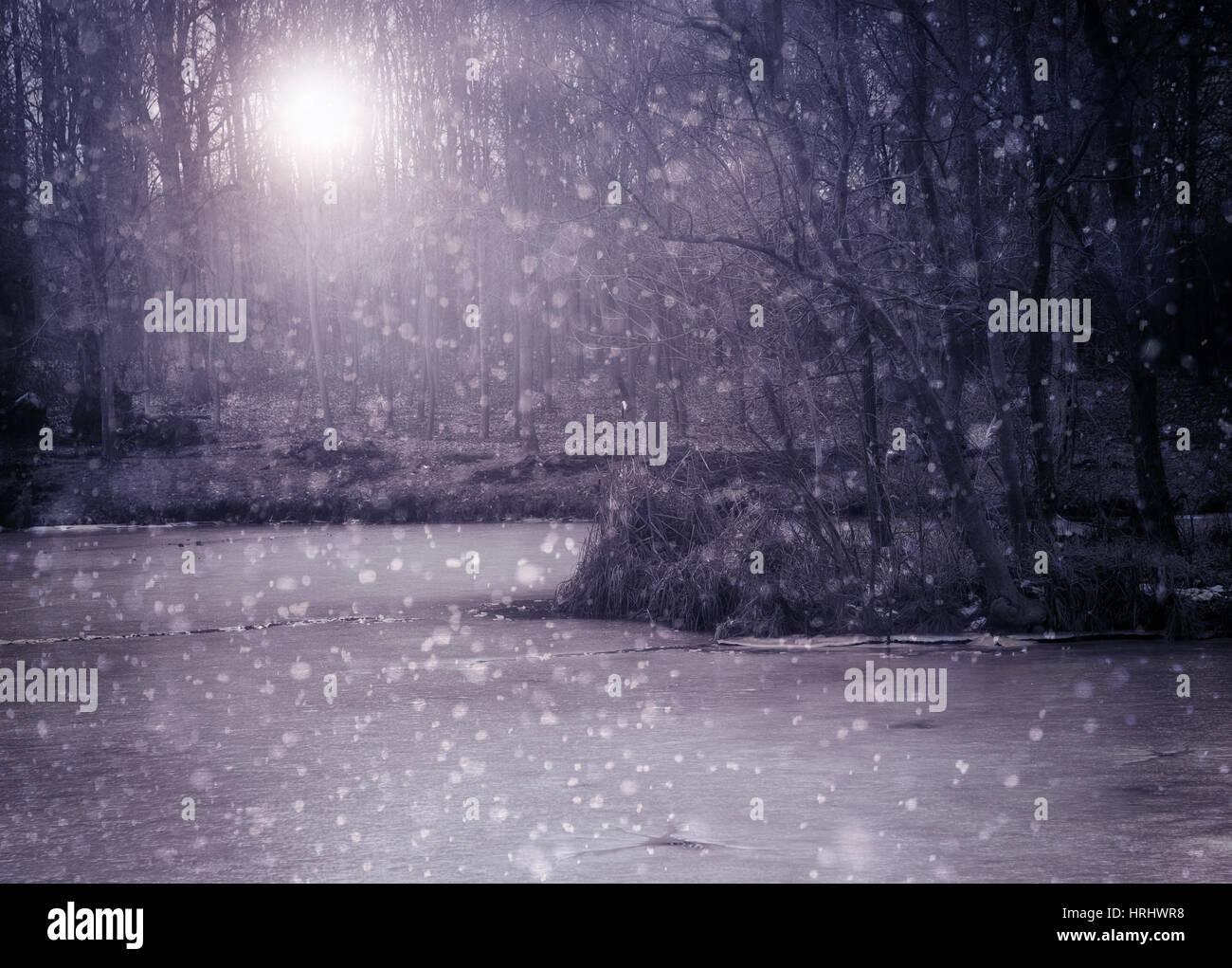 Paisaje monocromo con nieve y escarcha en invierno lago Foto de stock
