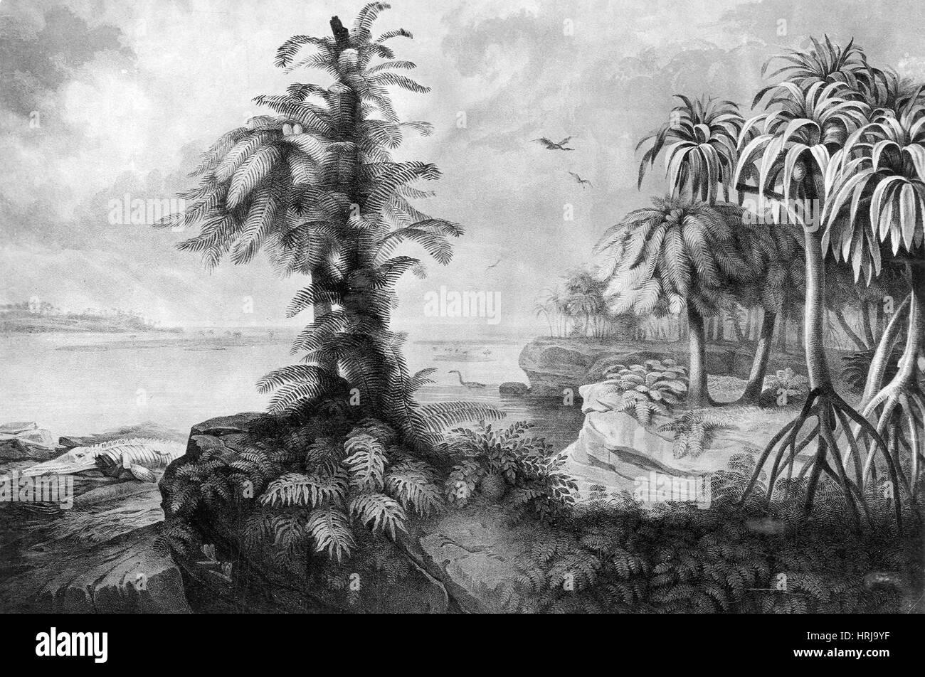 Prehistóricos, paisaje jurásico Imagen De Stock