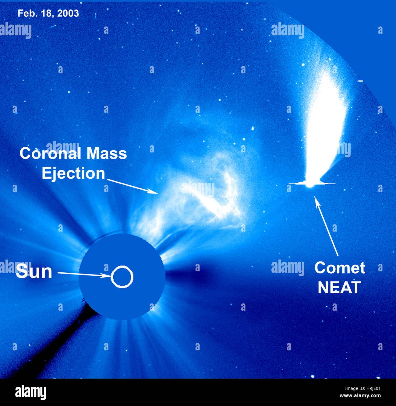 El cometa NEAT, LASCO, 2003 Imagen De Stock