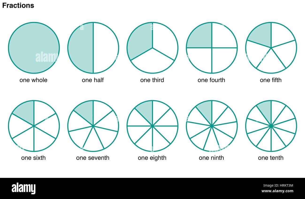 Círculos divididos en porciones para ilustrar las siguientes fracciones, un conjunto, una mitad, un tercio, un cuarto, Foto de stock